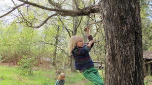Poika kiipeää puuhun köysitikkaita pitkin