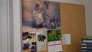 Tandläkarmottagning i Ekenäs. En vägg som är fylld av katt- och hundbilder plus kalender och en söt affisch med barn som leker tandläkare på en docka.
