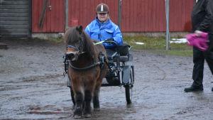 Bubblans ponnystall i Jakobstad. Emilia Wallin i kärran.