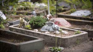 Bild från en kyrkogård för djur. I fokus är en grav med en stenstaty aven sovande hund med vingar.