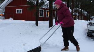 Inarilainen Eevi Korva kolaa pihaa ja toivoo että lumisateissa tulisi jo pieni tauko.