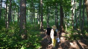 Två damer går på stigen i skogen.