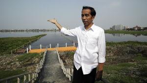 Joko Widodo, vinnaren i Indonesiens presidentval.