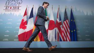 Justin Trudeau med långa steg på väg ut till höger framför flaggrad.