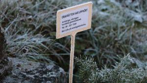Informationsskylt placerad på en grav där gravrätten upphört