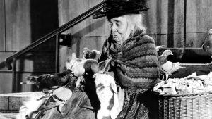 Kvinnan med fåglarna spelades av Jane Darwell. Här poserar hon med fåglarna i Mary Poppins.