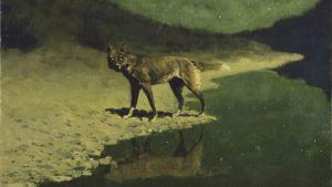 Frederic Remington: Månljus, varg (1909)