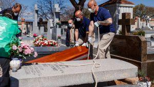 Personer i skyddsmasker hissar ner en kista i en grav.