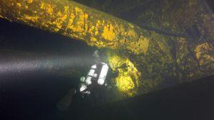 Dykare vid vraket efter pansarskeppet Ilmarinen.