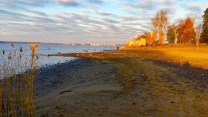 Lågt vatten vid Gustavsborgs strand i Vasa.