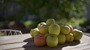 Kasa vihreitä omenia puisella pöydällä.