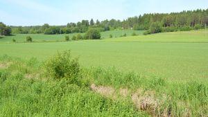 Åker vid Broby gård.