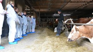 Bjarne Mara berättar om mjölkproduktion för lärarstuderande.