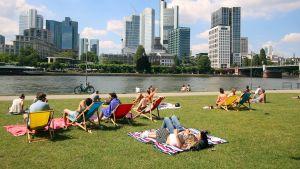 Människor solar i Frankfurt, Tyskland. Värmebölja 2019.