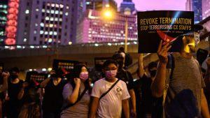 Demonstration för demokrati i Hongkong den 28 augusti 2019.