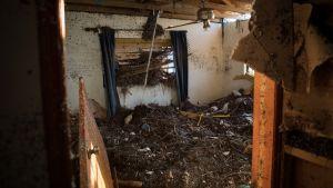 Ett rum täckt av sjögräs och bråte efter en översvämning.
