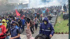 Tårgas och demonstranter utanför parlamentsbyggnaden i Ecuadors huvudstad Quito den 8 oktober 2019.