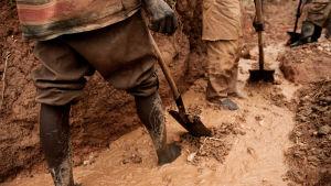 Tre män gräver med spadar i en lerig bäck.