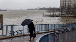 En person med paraply promenerar vid en grådaskig strand i Havshagen.