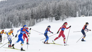 Damåkare tävlar i Tour de Ski.
