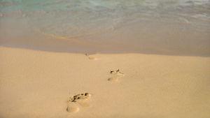 Fotspår på en sandstrand