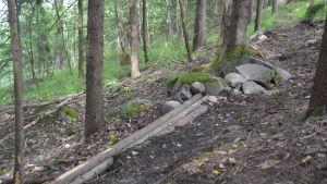 En bit av rutten längs terrängscyklingsbanan som byggs i Fiskars.