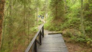Gångstigar och broar har iståndsatts vid överlåtelsen av Dagmars park till Fortsstyrelsen