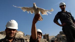 Under en solidaritetsprotest bland husruiner i Zamalka i Syrien släppte representanter för Vita hjälmarna ut fredsduvor.