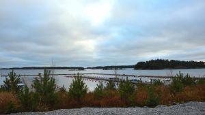 En kylig decembereftermiddag vid båthamnen i Baggö Marina. Vattnet ligger stilla och solen tittar fram bland molnen.