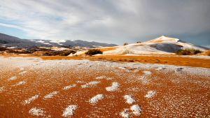 Snötäckta sanddyner.