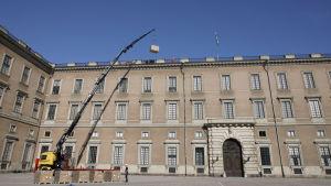 Solcellspaneler lyfts upp på Stockholms slotts tak.