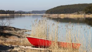 En röd roddbåt uppdragen på en strand i skärgården