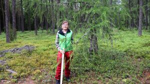 Forskningsingenjör Kaija Puputti i Solböle forskningsskog i Bromarv.
