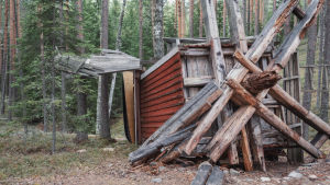 Gammal väderkvarn som blåst omkull i skogen.