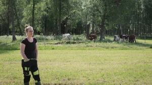 Luomutilan pitäjä Carin Grotenfelt seisoo lehmälaitumen edustalla kesällä.