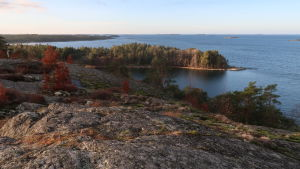 Utsikt från Glasberget mot en öppen fjärd, skärgård och blått hav.
