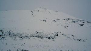 Toppen av Blåbärsfjället