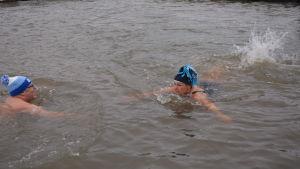 Två personer simmar i en vak.