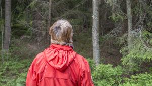 Lena Puranen letar efter svamp i skogen