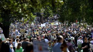 Massor av demonstranter med skyltar går längs med gata under klimatstrejken i Sydney den 20 september 2019.