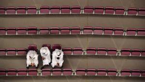 Tre personer sitter på en annars tom läktare under VM tävlingarna i Doha 2019.