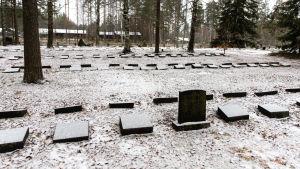 Hautakiviä Rauhan hautausmaalla.