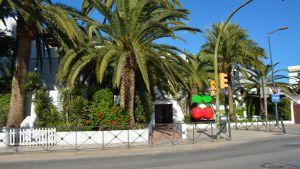 En klubb med en palm och ett stort körsbär i förgrunden.