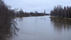 Vesi on korkealla Kokemäenjoessa.