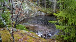 En vattenfylld grop invid ett berg i en skog.