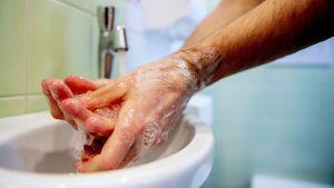 En person tvättar händerna i ett handfat.