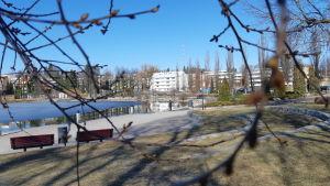 Valkeisenlampi Kuopiossa