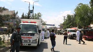 Ambulanser och andra bilar parkerade vid en väg.
