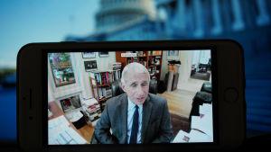 USA:s ledande smittskyddsexpert Anthony Fauci under en av senatens videokonferenser den 12.5.