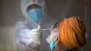 En man testas för covid-19 i en tillfällig testningslokal inrymd i ett hotell i New Delhi. Bilden tagen den 17 juni.
